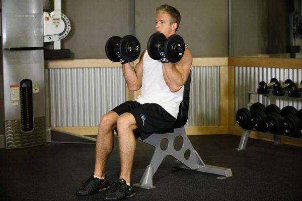 جلو بازو با دمبل نشسته
