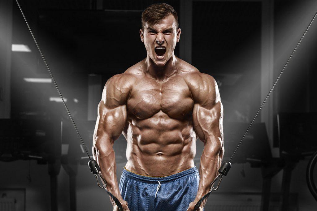 پروتئین کازئین باعث چربیسوزی نیز میشود