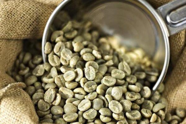همه چیز در مورد مصرف قهوه سبز و لاغری