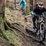 راهنمای خرید دوچرخه کوهستان