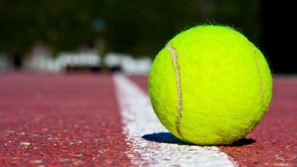 راهنمای خرید توپ تنیس